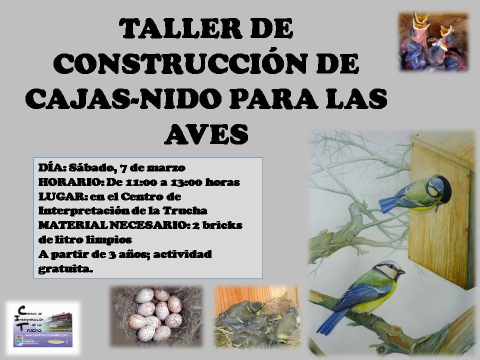 TALLER CONSTRUCCIÓN CAJAS-NIDO PARA AVES