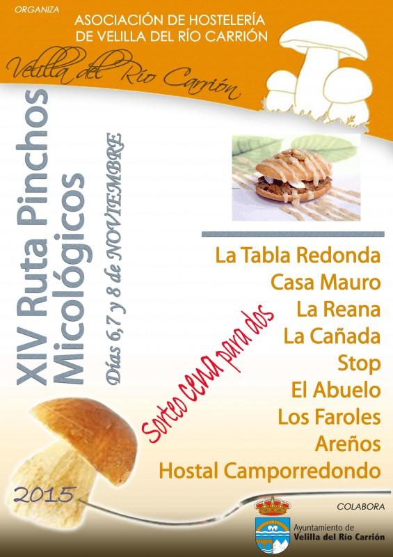 Cartel XIV RUTA PINCHOS MICOLÓGICOS 2015